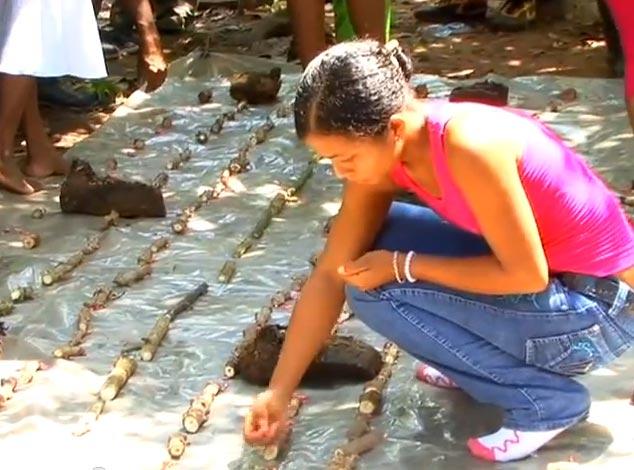 escuela-de-campo-agroforestal-venezuela